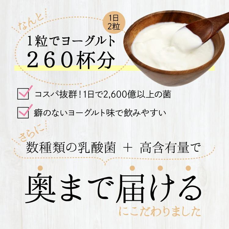 サプリメント by ZERU乳酸菌3